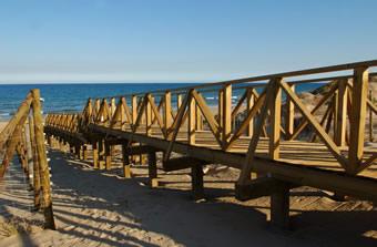 Pasarelas. Guardamar. Alicante